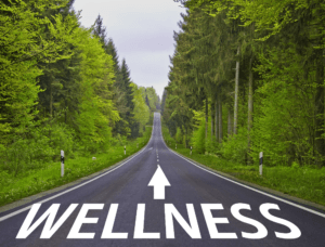 The Quest For Ultimate Health And Wellness