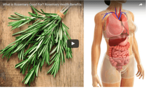 9_Rosemary_Health_Benefits