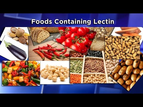 Are Lectins The New Diet Enemy?