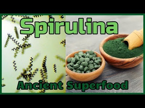 The 3.5 Billion Year Old Superfood - Spirulina