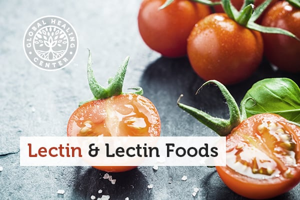 What Exactly Are Lectins?